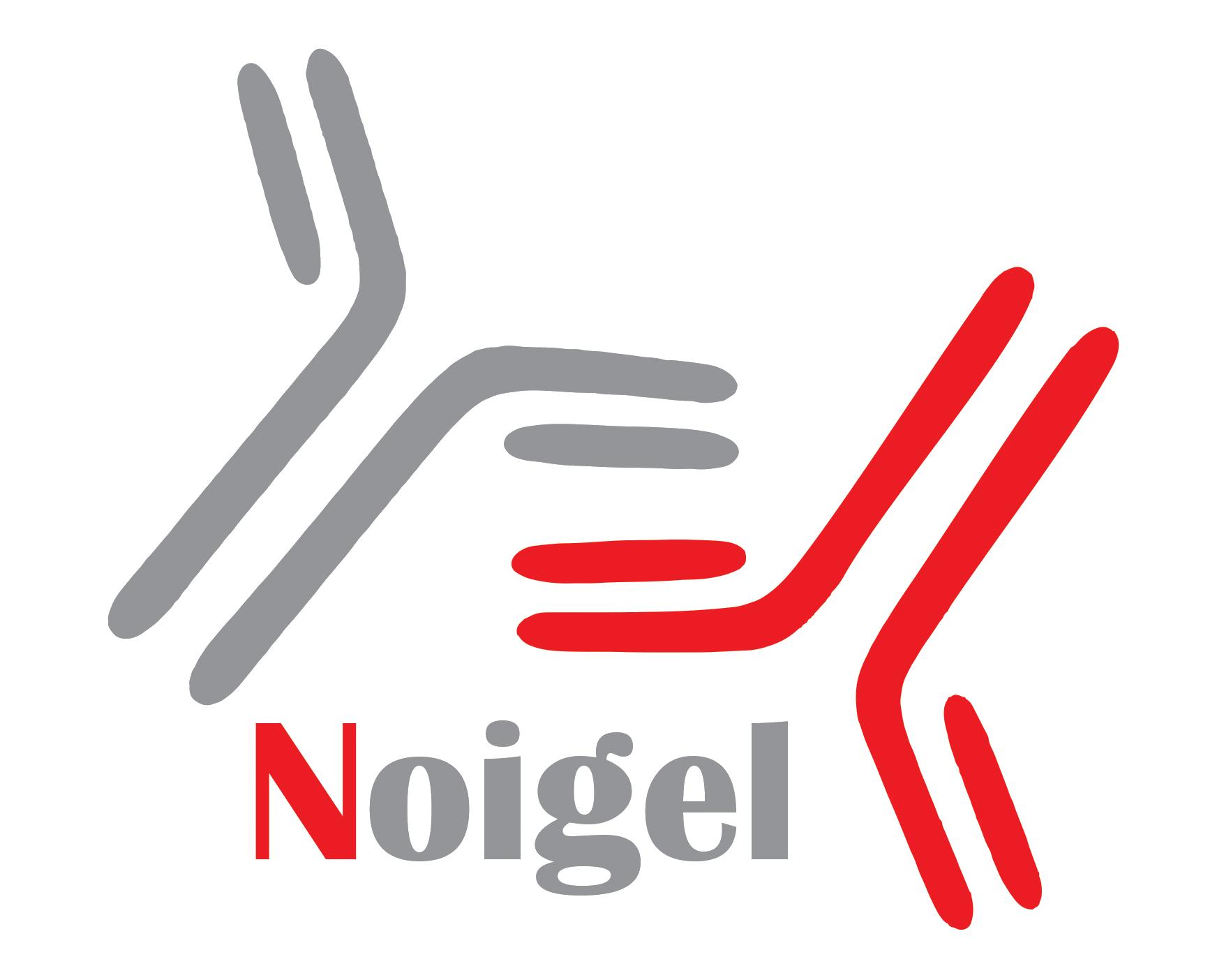 NOIGEL_LOGO